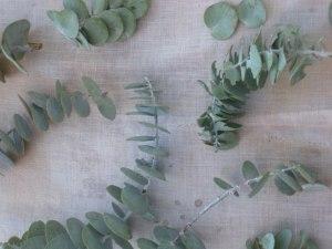 Leaf prints 003